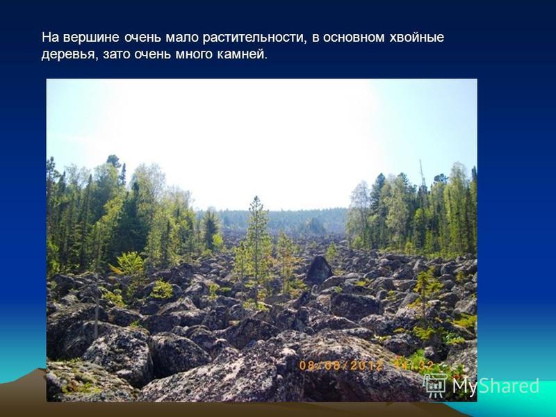 На вершине очень мало растительности, в основном хвойные деревья, зато очень много камней.