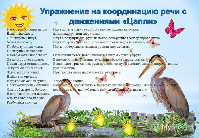 Как-то раз большие цапли Вышли на охоту. Они лягушек ищут, Ходят по болоту. По болоту цапли ходят, Но лягушек не находят. Клювом кочки поддевают Да по сторонам кидают. Цапли вдруг остановились, За кустами притаились. Ждут, когда лягушки Выйдут на опу