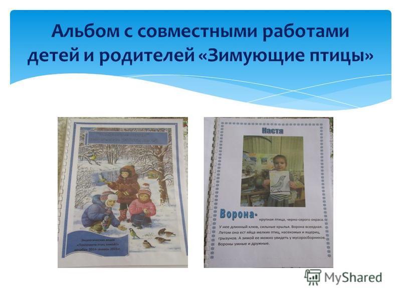 Альбом с совместными работами детей и родителей «Зимующие птицы»