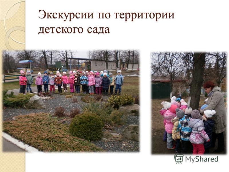 Экскурсии по территории детского сада