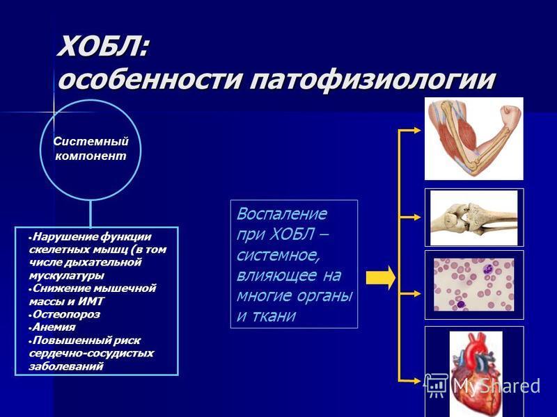 ХОБЛ: особенности патофизиологии Системный компонент Нарушение функции скелетных мышц (в том числе дыхательной мускулатуры Снижение мышечной массы и ИМТ Остеопороз Анемия Повышенный риск сердечно-сосудистых заболеваний Воспаление при ХОБЛ – системное