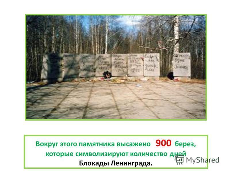Вокруг этого памятника высажено 900 берез, которые символизируют количество дней Блокады Ленинграда.