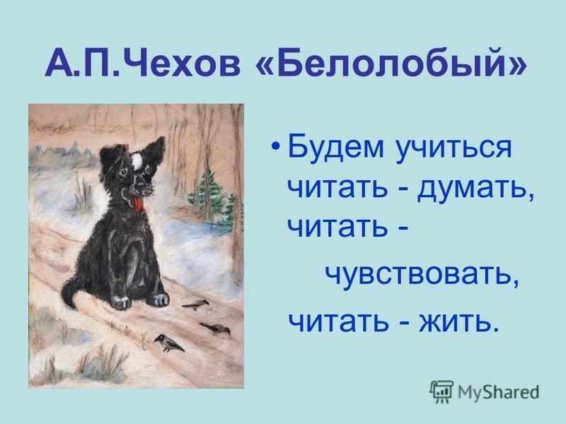 А.П.Чехов «Белолобый» Будем учиться читать - думать, читать - чувствовать, читать - жить.