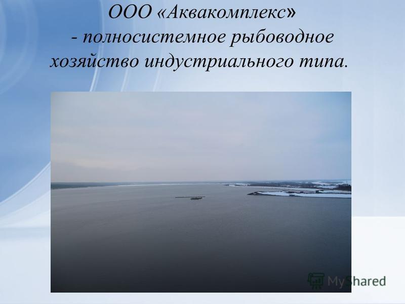 ООО «Аквакомплекс » - полносистемное рыбоводное хозяйство индустриального типа.