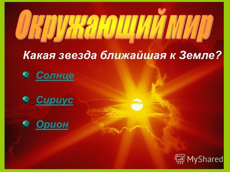 23 Какая звезда ближайшая к Земле? Солнце Сириус Орион