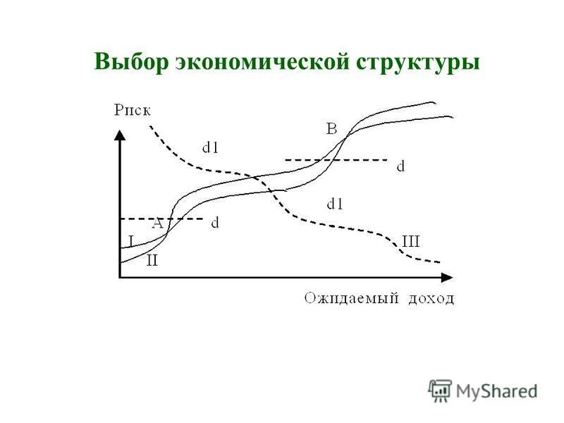 Выбор экономической структуры