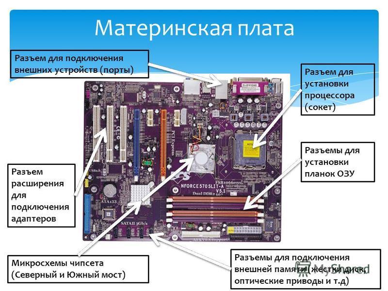 Материнская плата Разъем для установки процессора (сокет) Разъемы для установки планок ОЗУ Микросхемы чипсета (Северный и Южный мост) Разъем расширения для подключения адаптеров Разъемы для подключения внешней памяти (жестки диск, оптические приводы