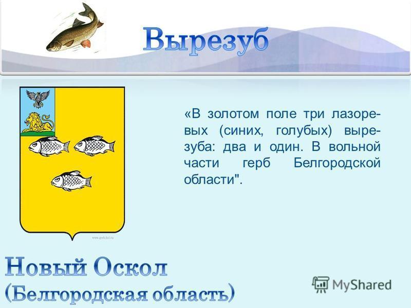 «В золотом поле три лазаре- вых (синих, голубых) выре- зуба: два и один. В вольной части герб Белгородской области.