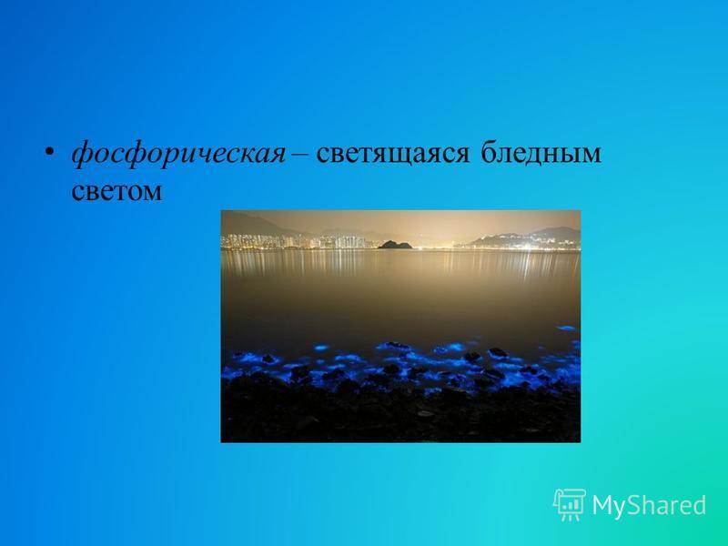 фосфорическая – светящаяся бледным светом