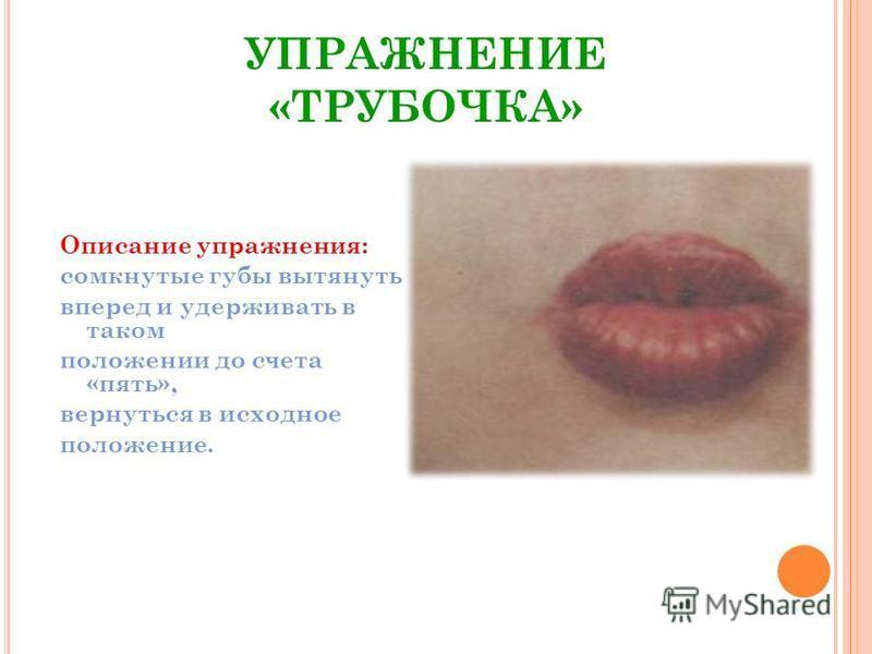 УПРАЖНЕНИЕ «ТРУБОЧКА» Описание упражнения: сомкнутые губы вытянуть вперед и удерживать в таком положении до счета «пять», вернуться в исходное положение.