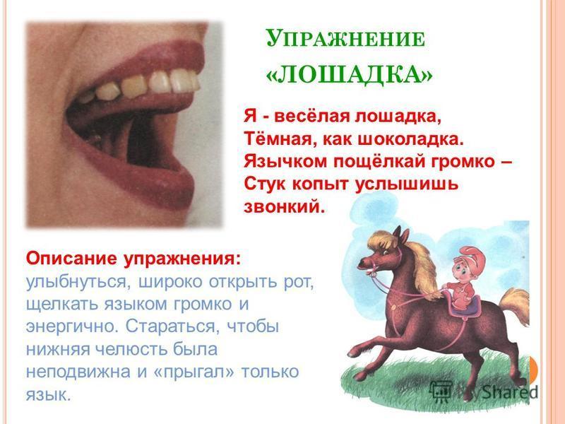 У ПРАЖНЕНИЕ «ЛОШАДКА» Описание упражнения: улыбнуться, широко открыть рот, щелкать языком громко и энергично. Стараться, чтобы нижняя челюсть была неподвижна и «прыгал» только язык. Я - весёлая лошадка, Тёмная, как шоколадка. Язычком пощёлкай громко