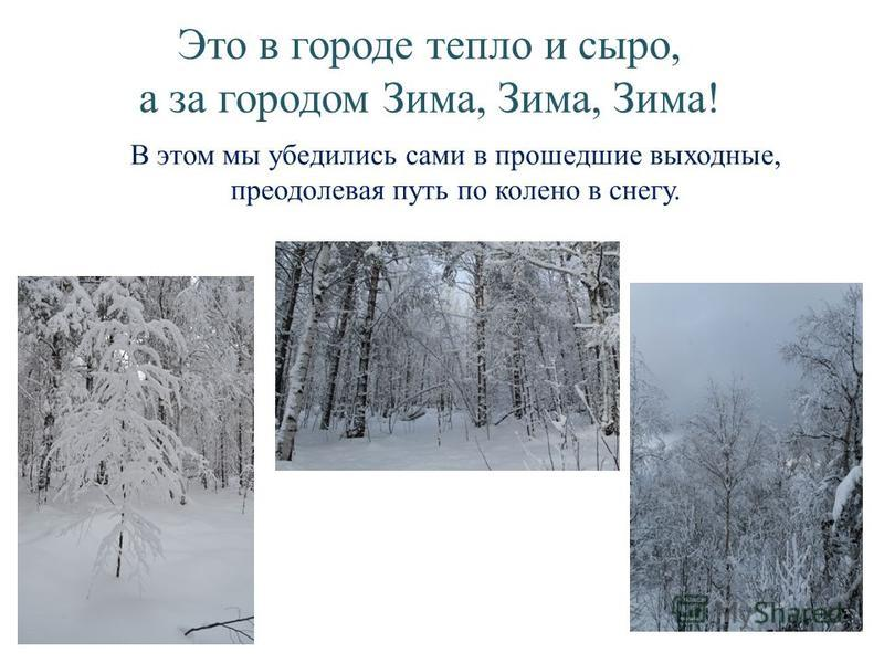 Это в городе тепло и сыро, а за городом Зима, Зима, Зима! В этом мы убедились сами в прошедшие выходные, преодолевая путь по колено в снегу.