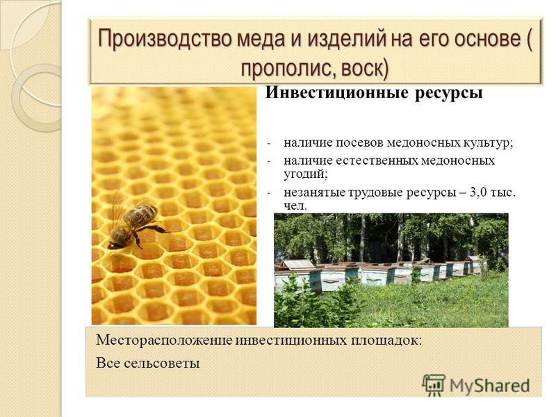 Производство меда и изделий на его основе ( прополис, воск) - наличие посевов медоносных культур; - наличие естественных медоносных угодий; - незанятые трудовые ресурсы – 3,0 тыс. чел. Месторасположение инвестиционных площадок: Все сельсоветы Инвести