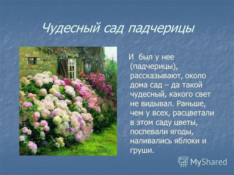 Чудесный сад падчерицы И был у нее (падчерицы), рассказывают, около дома сад – да такой чудесный, какого свет не видывал. Раньше, чем у всех, расцветали в этом саду цветы, поспевали ягоды, наливались яблоки и груши.