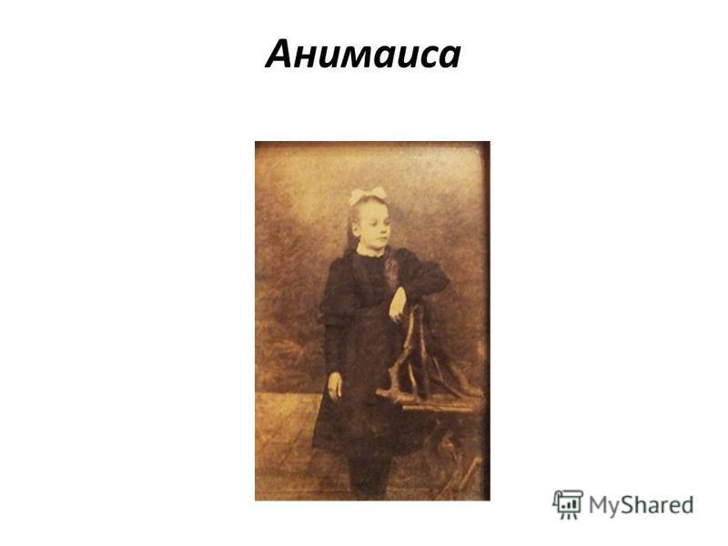 Анимаиса