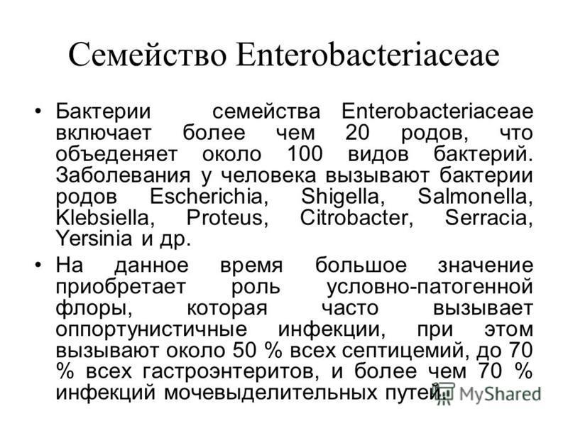 Семейство Enterobacteriaceae Бактерии семейства Enterobacteriaceae включает более чем 20 родов, что объединяет около 100 видов бактерий. Заболевания у человека вызывают бактерии родов Escherichia, Shigella, Salmonella, Klebsiella, Proteus, Citrobacte