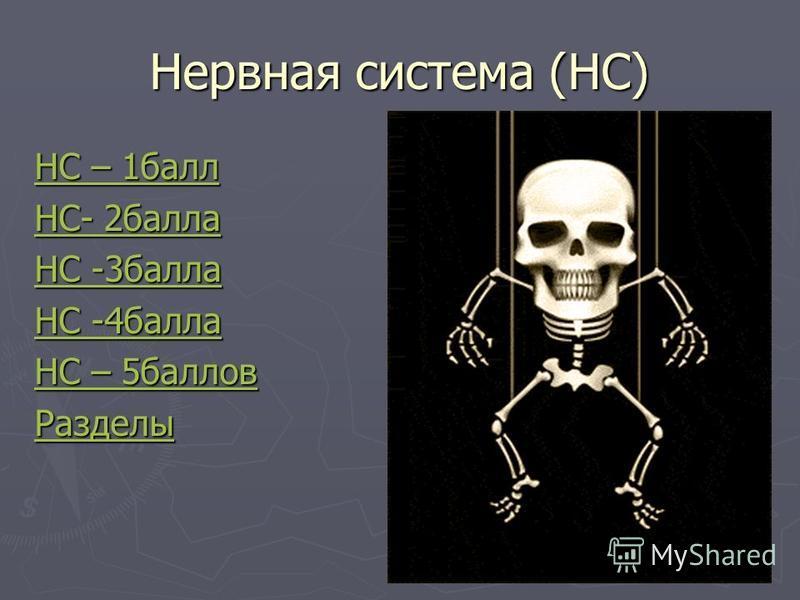 Нервная система (НС) НС – 1 балл НС – 1 балл НС- 2 балла НС- 2 балла НС -3 балла НС -3 балла НС -4 балла НС -4 балла НС – 5 баллов НС – 5 баллов Разделы