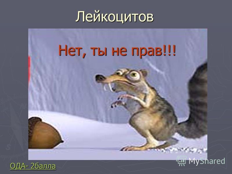 Лейкоцитов ОДА- 2 балла ОДА- 2 балла Нет, ты не прав!!!