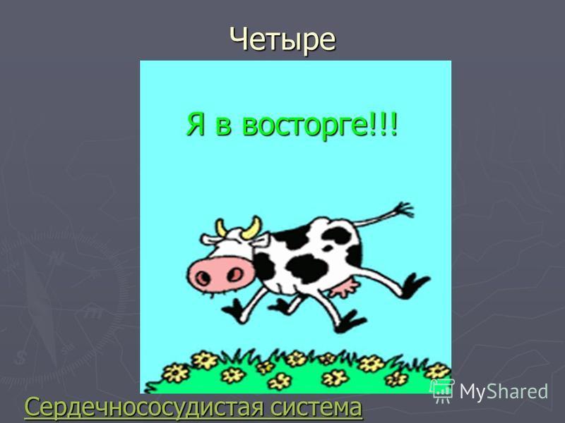 Четыре Сердечнососудистая система Сердечнососудистая система Я в восторге!!!