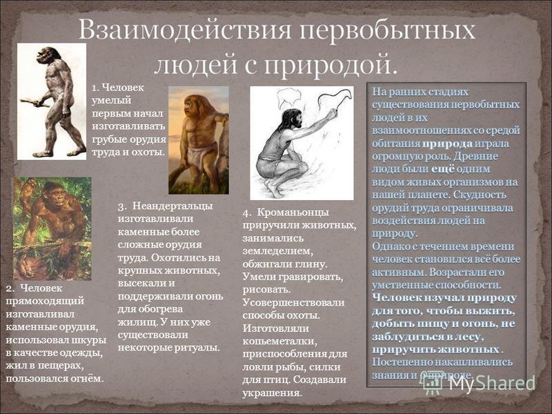 1. Человек умелый первым начал изготавливать грубые орудия труда и охоты. 2. Человек прямоходящий изготавливал каменные орудия, использовал шкуры в качестве одежды, жил в пещерах, пользовался огнём. 3. Неандертальцы изготавливали каменные более сложн
