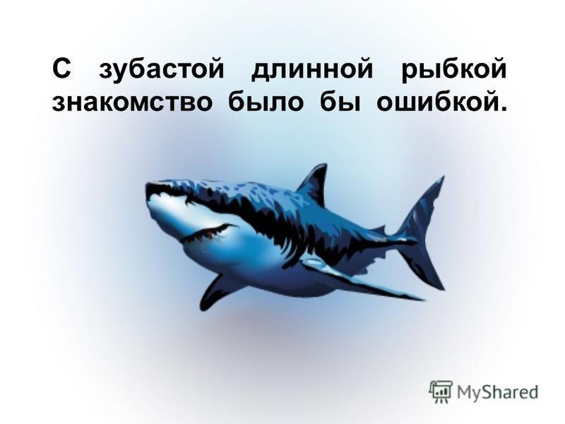 С зубастой длинной рыбкой знакомство было бы ошибкой.