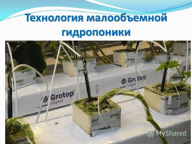 Для гидропонного выращивания растений 971