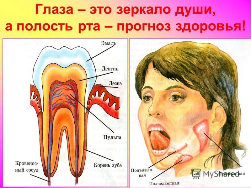 Глаза – это зеркало души, а полость рта – прогноз здоровья!