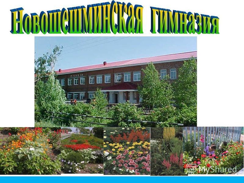 МБОУ «Новошешминская гимназия»