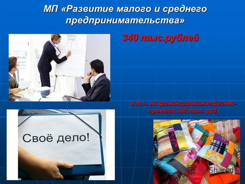 МП «Развитие малого и среднего предпринимательства» 340 тыс.рублей в т.ч. на финансирование бизнес- проекта 300 тыс. руб.