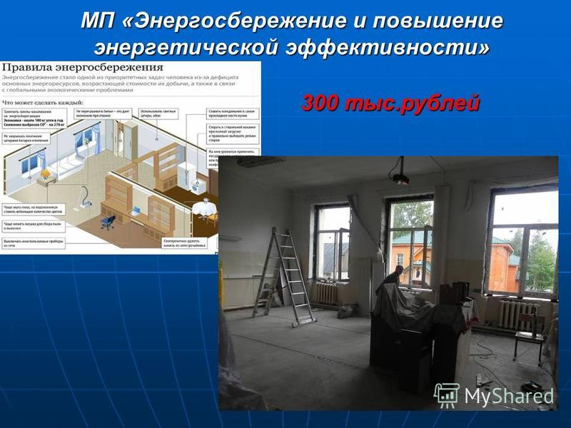МП «Энергосбережение и повышение энергетической эффективности» 300 тыс.рублей