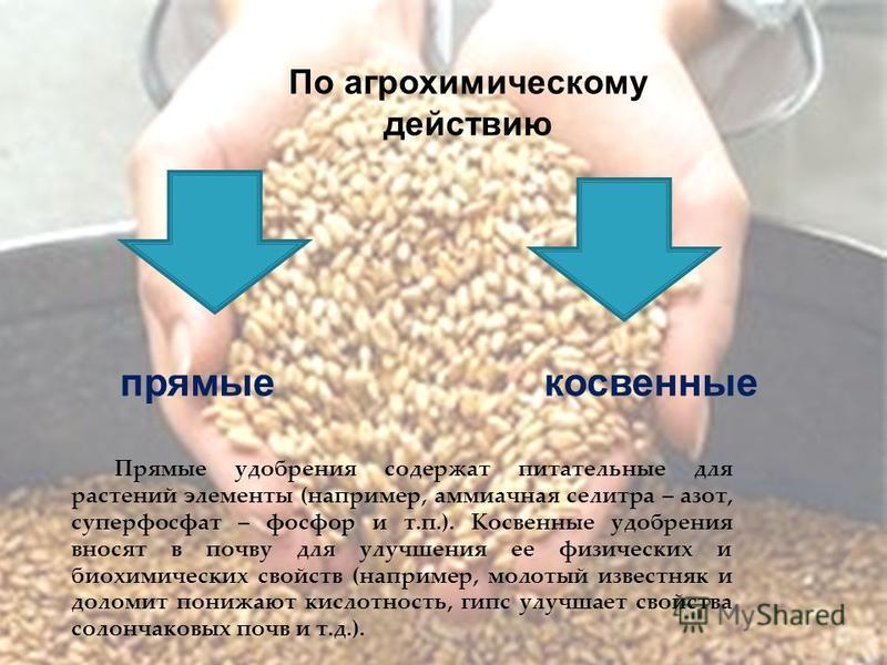 По агрохимическому действию прямые косвенные Прямые удобрения содержат питательные для растений элементы (например, аммиачная селитра – азот, суперфосфат – фосфор и т.п.). Косвенные удобрения вносят в почву для улучшения ее физических и биохимических