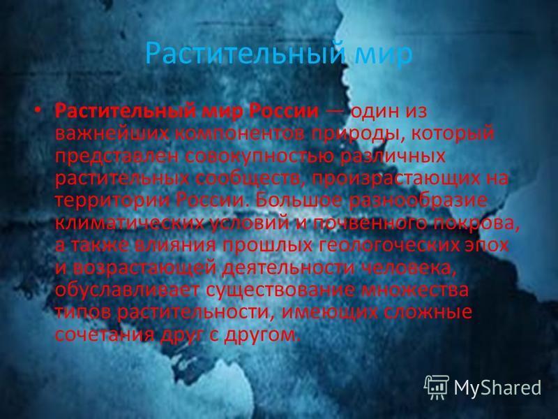 Растительный мир Растительный мир России один из важнейших компонентов природы, который представлен совокупностью различных растительных сообществ, произрастающих на территории России. Большое разнообразие климатических условий и почвенного покрова,