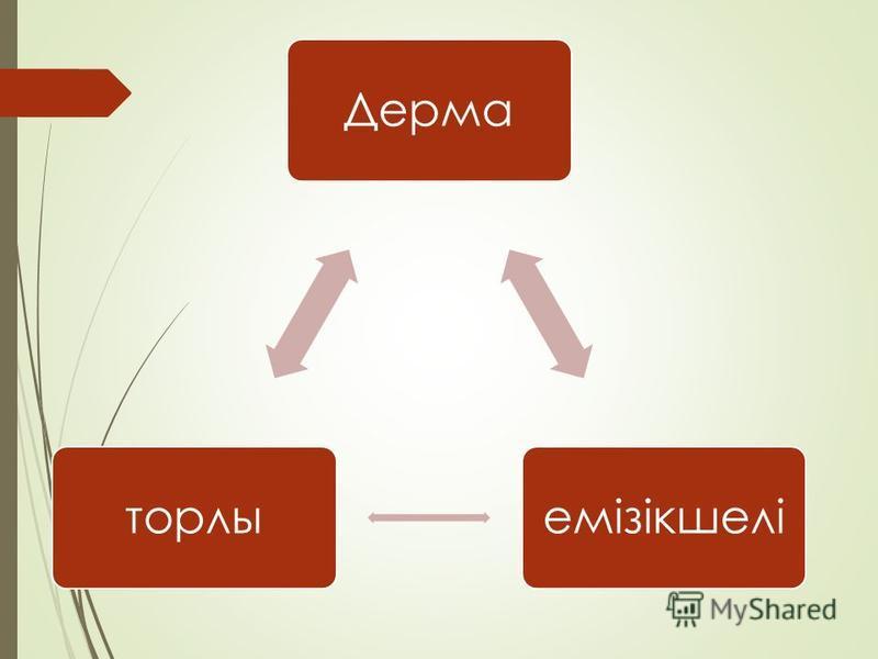 Дермаемізікшеліторты