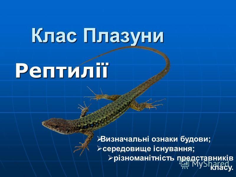 Клас Плазуни Рептилії Визначальні ознаки будови; середовище існування; різноманітність представників класу.