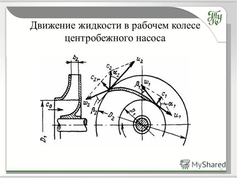Движение жидкости в рабочем колесе центробежного насоса 15