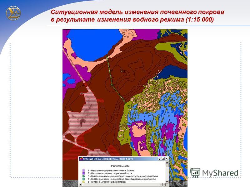 Ситуационная модель изменения почвенного покрова в результате изменения водного режима (1:15 000)