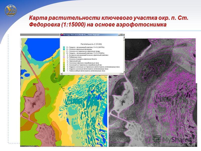 Карта растительности ключевого участка окр. п. Ст. Федоровка (1:15000) на основе аэрофотоснимка