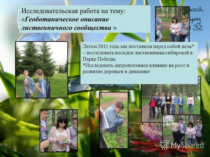 Исследовательская работа на тему: «Геоботаническое описание лиственничного сообщества » Летом 2011 года мы поставили перед собой цель* – исследовать посадки лиственницы сибирской в Парке Победы. *Исследовать антропогенное влияние на рост и развитие д