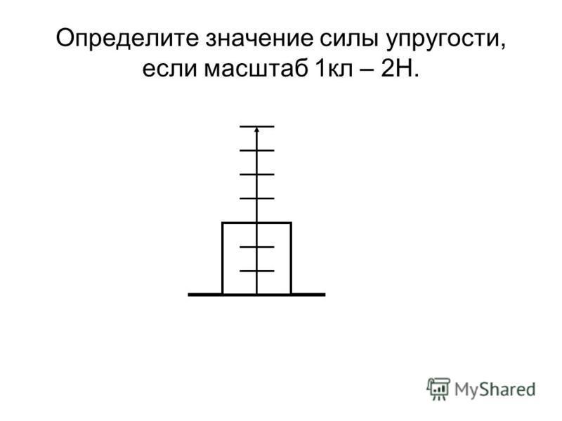 Определите значение силы упругости, если масштаб 1 кл – 2Н.