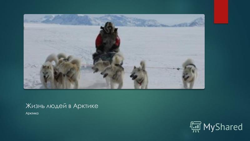 Жизнь людей в Арктике Арктика