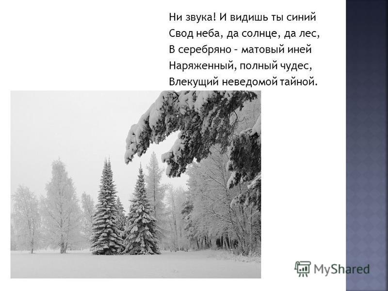 Ни звука! И видишь ты синий Свод неба, да солнце, да лес, В серебряно – матовый иней Наряженный, полный чудес, Влекущий неведомой тайной.