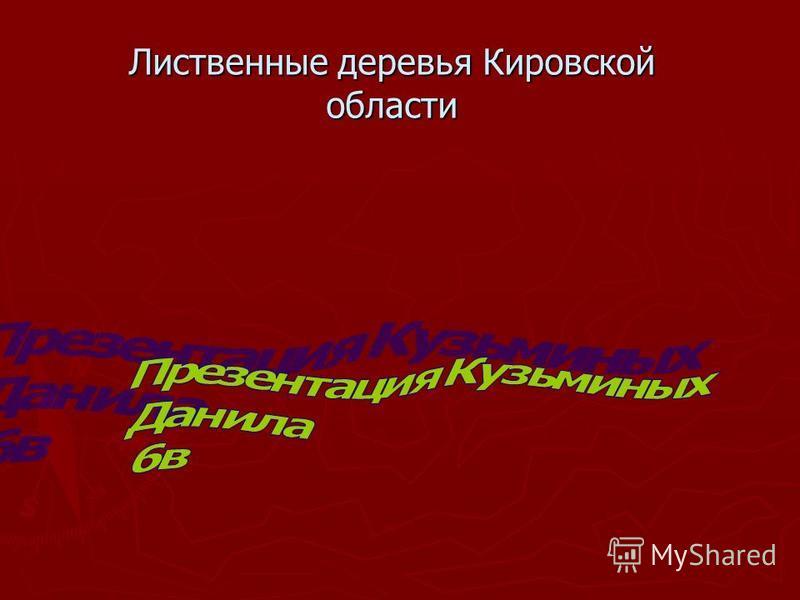 Лиственные деревья Кировской области