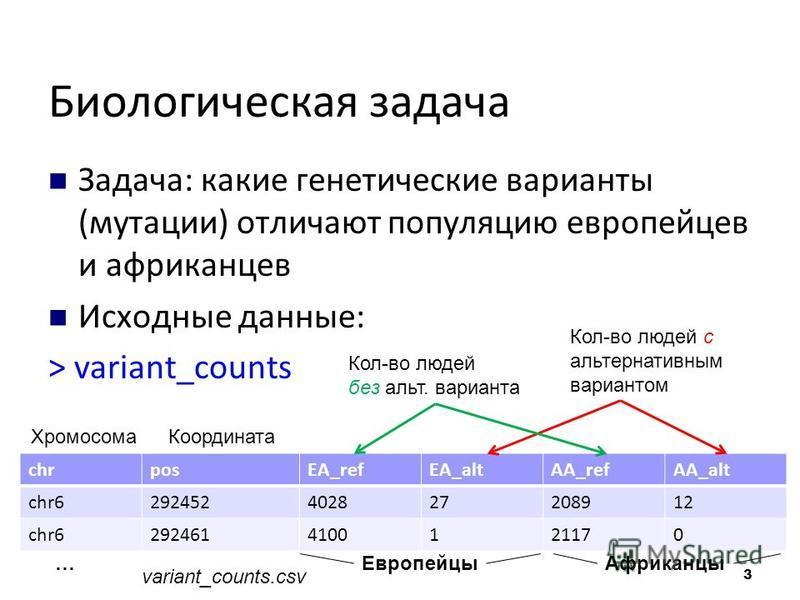 Биологическая задача Задача: какие генетические варианты (мутации) отличают популяцию европейцев и африканцев Исходные данные: > variant_counts chrposEA_refEA_altAA_refAA_alt chr6292452402827208912 chr62924614100121170 Хромосома Координата Европейцы