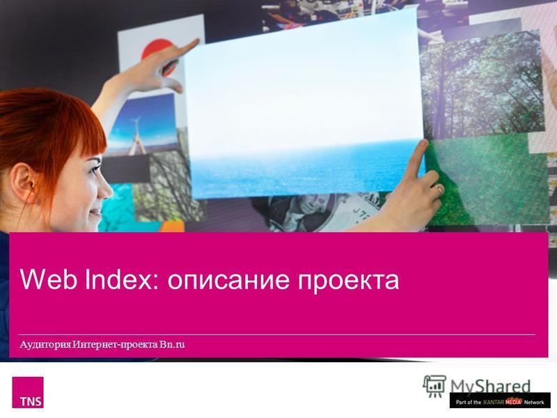 Аудитория Интернет-проекта «Панорама ТВ» Web Index: описание проекта Аудитория Интернет-проекта Bn.ru