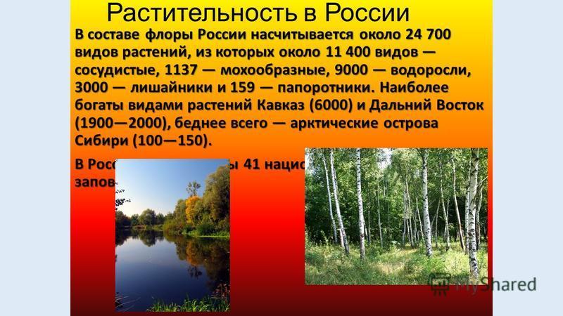 Россия является многонациональным государством, что отражено также в её конституции. На территории страны проживают более 180 народов. В 2010 году русские составили 81% или 111 млн. из 137 млн. указавших свою национальную принадлежность, представител