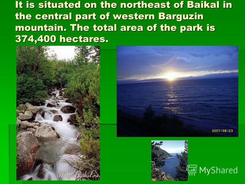 It is situated on the northeast of Baikal in the central part of western Barguzin mountain. The total area of the park is 374,400 hectares.
