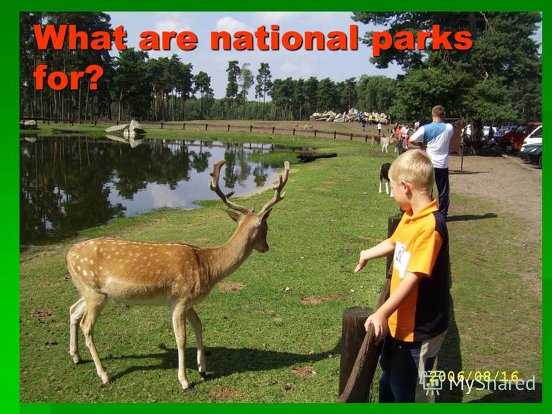 What are national parks for?