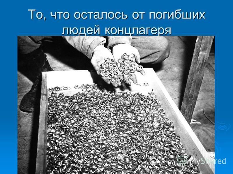 То, что осталось от погибших людей концлагеря