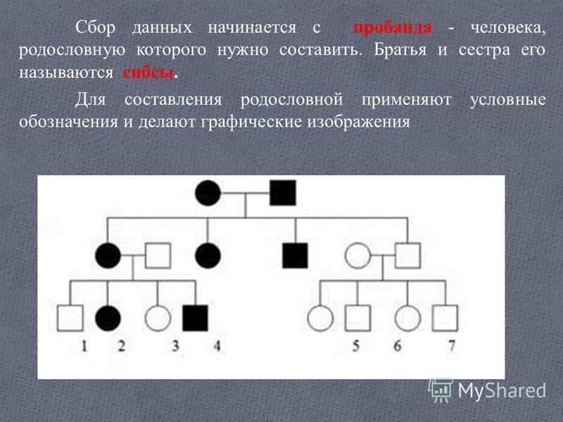 Сбор данных начинается с пробанда - человека, родословную которого нужно составить. Братья и сестра его называются сибсы. Для составления родословной применяют условные обозначения и делают графические изображения