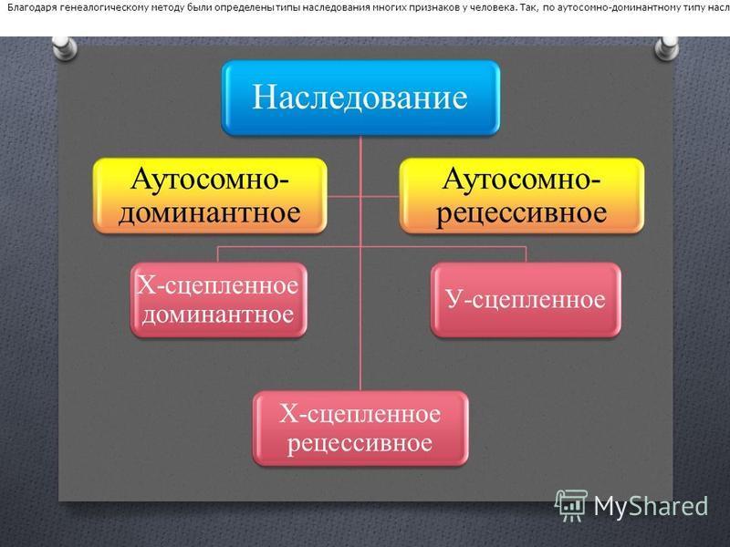 Наследование Х-сцепленое доминантное Х-сцепленое рецессивное У-сцепленое Аутосомно- доминантное Аутосомно- рецессивное Благодаря генеалогическому методу были определены типы наследования многих признаков у человека. Так, по аутосомно-доминантному тип